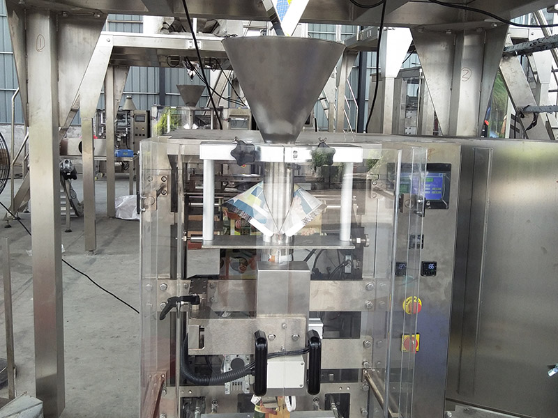 BAOPACK beans packaging machine personalized for plant-13