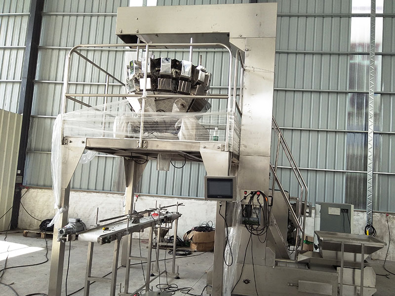 multihead weigher packing machine 14head supplier for chips-39
