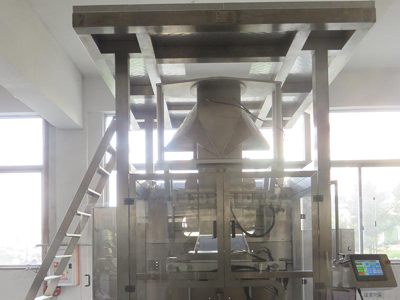 Extra large packaging machine