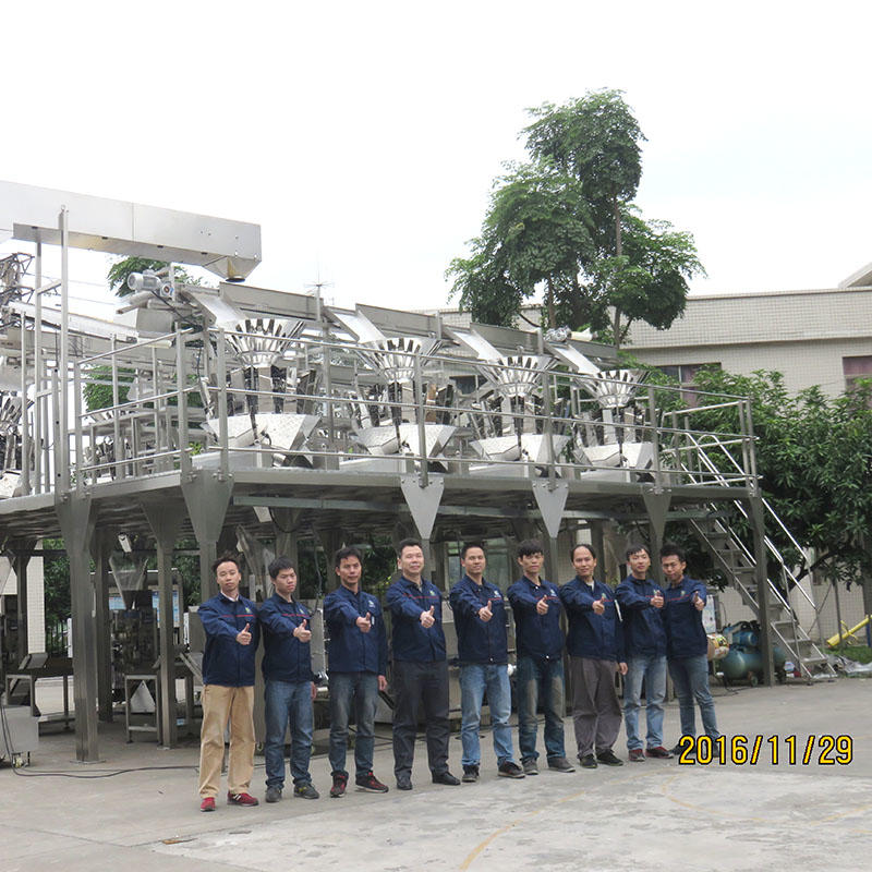 BAOPACK sealed vffs packing machine supplier for plant-1