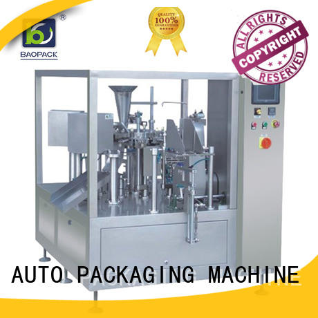 pouch packing machine price potato pouch small Warranty BAOPACK